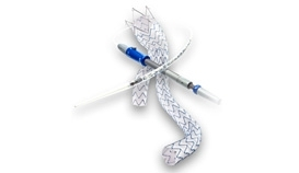 AAA Stent Graft System